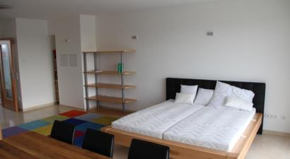 Accommodation Danube Apartment with City View